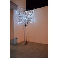 location arbres lumineux 2m50