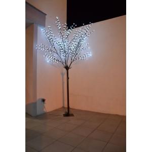 location arbre lumineux 2m50